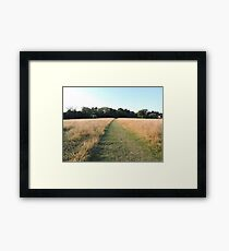 Golden Grasses: Path of Dreams Framed Print