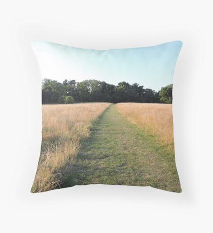 Golden Grasses: Path of Dreams Throw Pillow