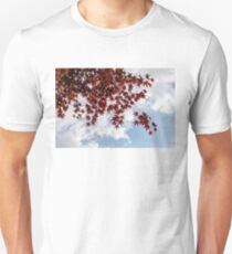 Japanese Maple Red Lace - Horizontal View Downwards Right T-Shirt
