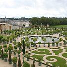Orangerie of Versailles by Elena Skvortsova