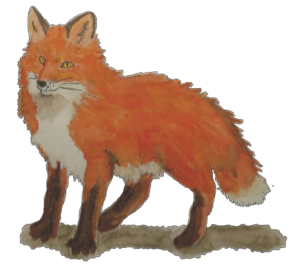 Fox by HRHiggins