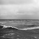 Brighton Waves - Black and White by Rhys Herbert