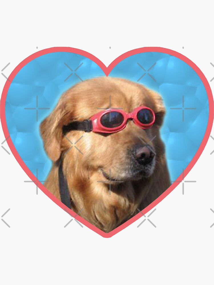 Doggo Stickers: Swimmer Dog by Elisecv