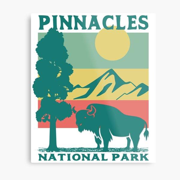 Pinnacles National Park Metal Print