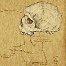 Archaic Homo sapiens by Toradellin
