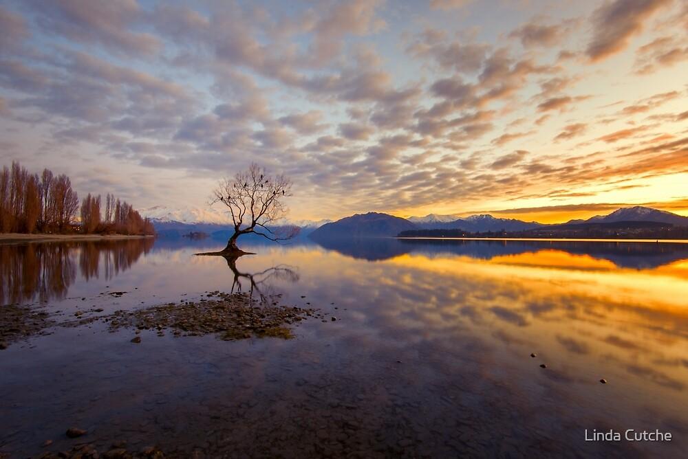 Golden Moments by Linda Cutche