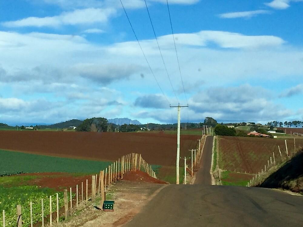 northern Tasmania by jayview