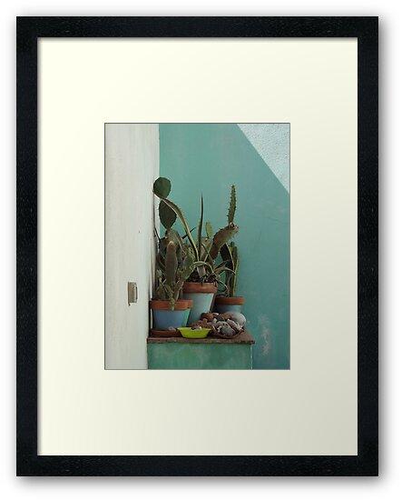 Mediterranean cactus scene  by FigTreeDesigns