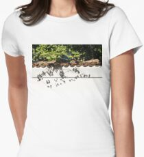 Patterned Sunshine - Ginkgo Shadows on a White Stucco Wall  T-Shirt