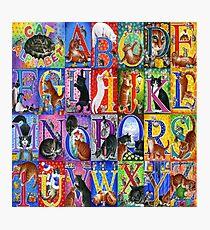 Cats Alphabet Photographic Print