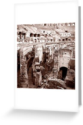 Colosseum Rome by Maggie Hegarty