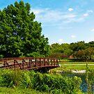 Mcbride Arboretum - Footbridge  by Shawna Rowe