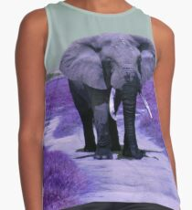 Bull Elephant in Purple Contrast Tank