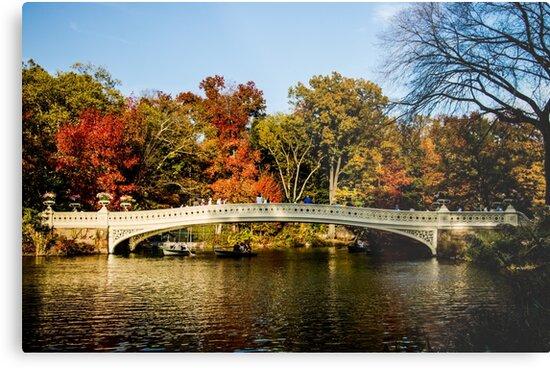 Bow Bridge by Caprice Logan