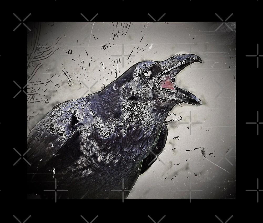 Croaking Black Raven by diane  addis