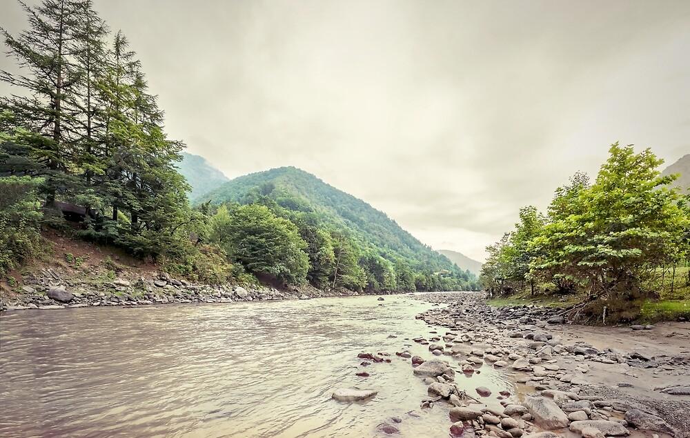 River by Svetlana Sewell