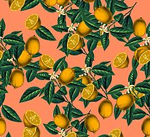 Lemon and Leaf by Burcu Korkmazyurek