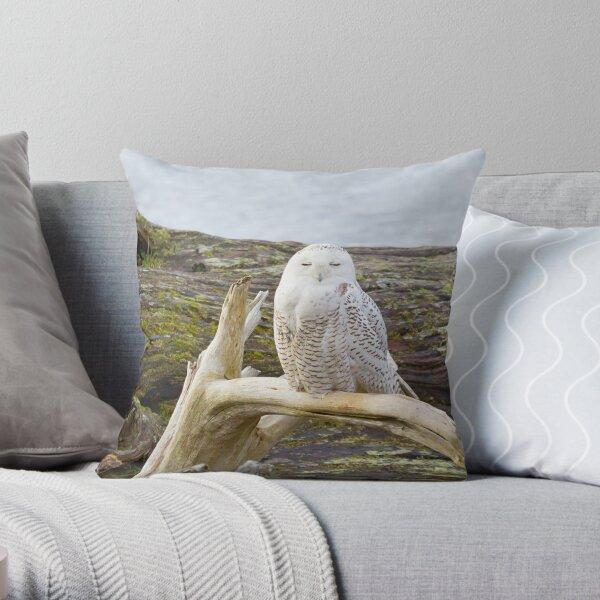Snowy Owl Squint Throw Pillow