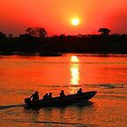 Zambezi Sunset by Anthony Goldman