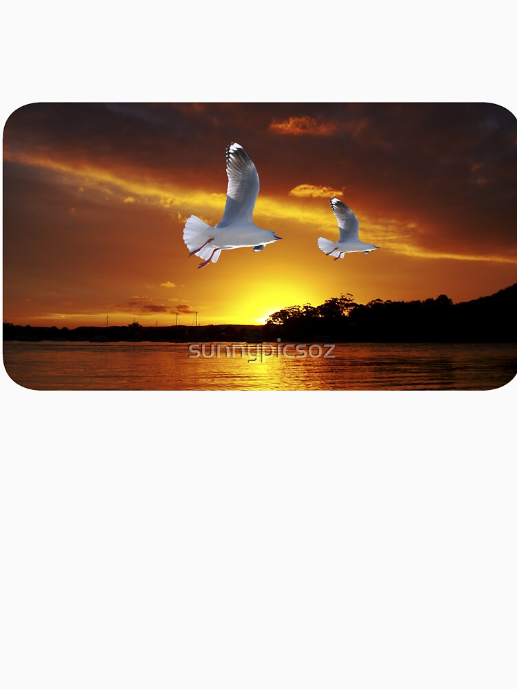 Golden seagull Ocean Sunset. Printed T-Shirts and Apparel. by sunnypicsoz
