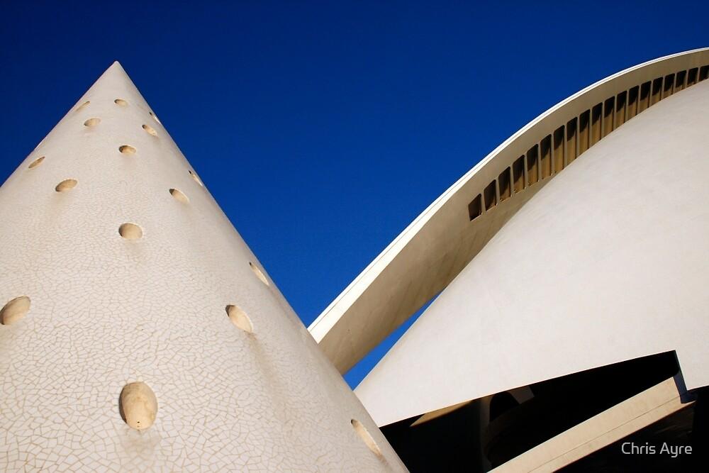 El Palau de les Arts Reina Sofía by Chris Ayre