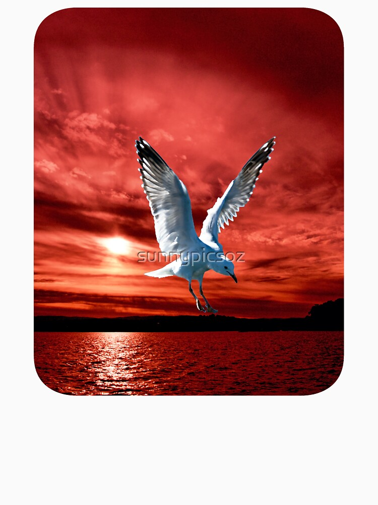 Silver Gull in Orange/ Red Ocean Sunrise. Printed T-Shirts and Apparel. by sunnypicsoz