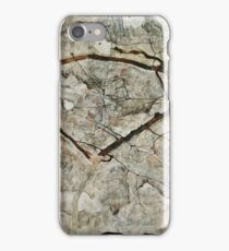 Egon Schiele - Autumn Tree in Stirred Air (Winter Tree) (1912)  iPhone Case/Skin