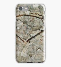 Egon Schiele - Autumn Tree in Stirred Air (Winter Tree) (1912)  iPhone Case/Skin