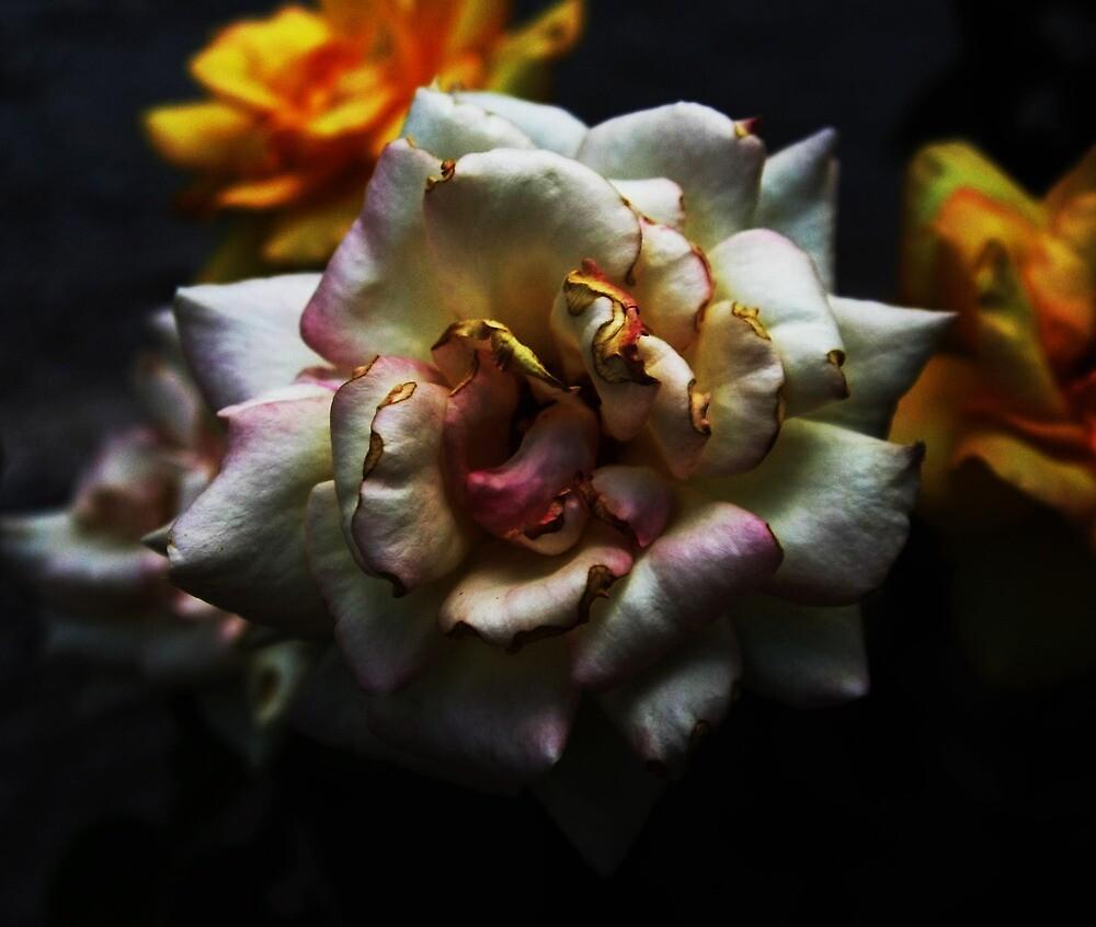 wilting flower by imhunterjkennon