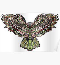 Colorfull gorgeos eagle owl Poster