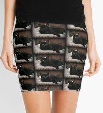 Reclining Mini Skirt