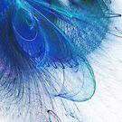 Swirling peacock by Lois Bennett