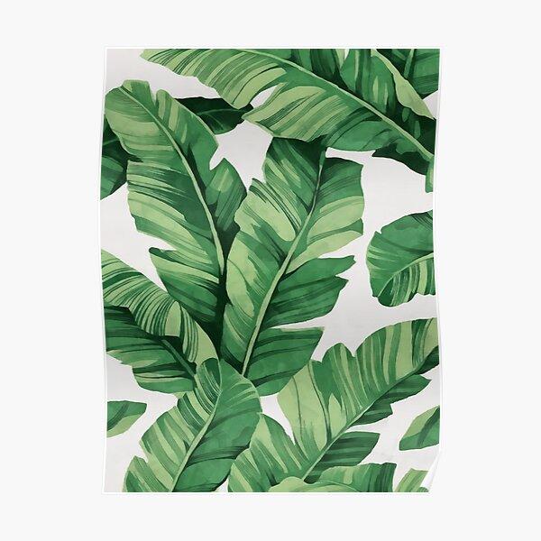 Tropical banana leaves Poster