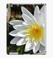 Fragrant Water Lily V iPad Case/Skin