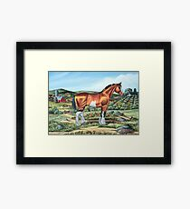 CLYDESDALE.......(on craft foam) Framed Print
