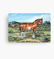 CLYDESDALE.......(on craft foam) Canvas Print