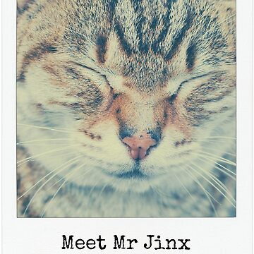 Meet Mr Jinx by NIPPONGA