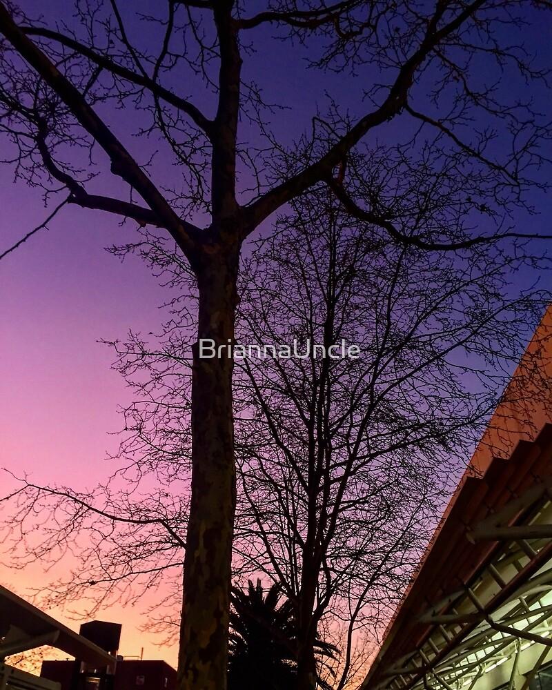 purple sky by BriannaUncle