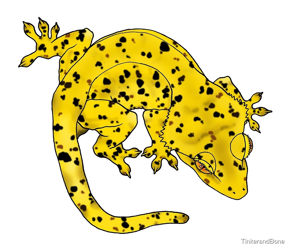Yellow Dalmation Crested Gecko by TinkerandBone