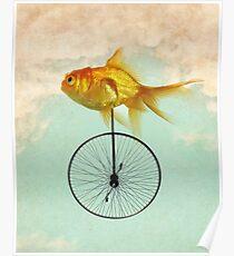 Póster monociclo goldfish