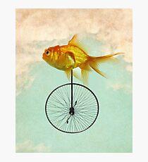 Lámina fotográfica monociclo goldfish