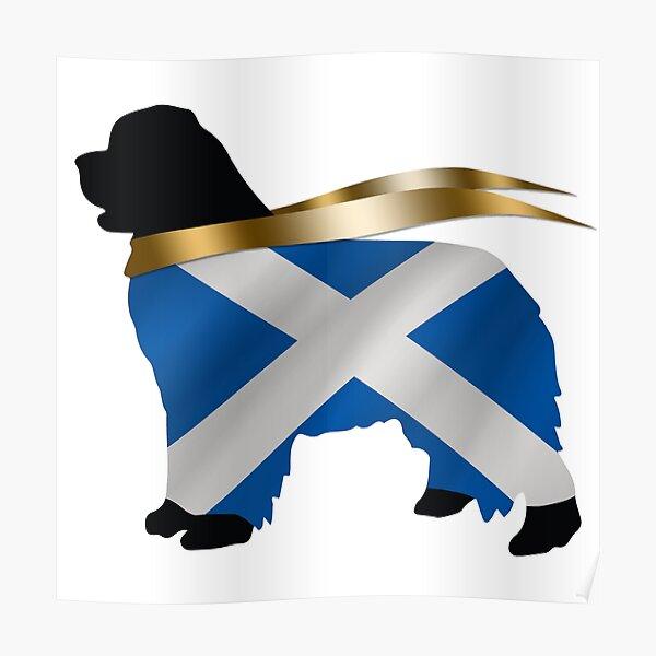 Scotland Newfoundland  Poster