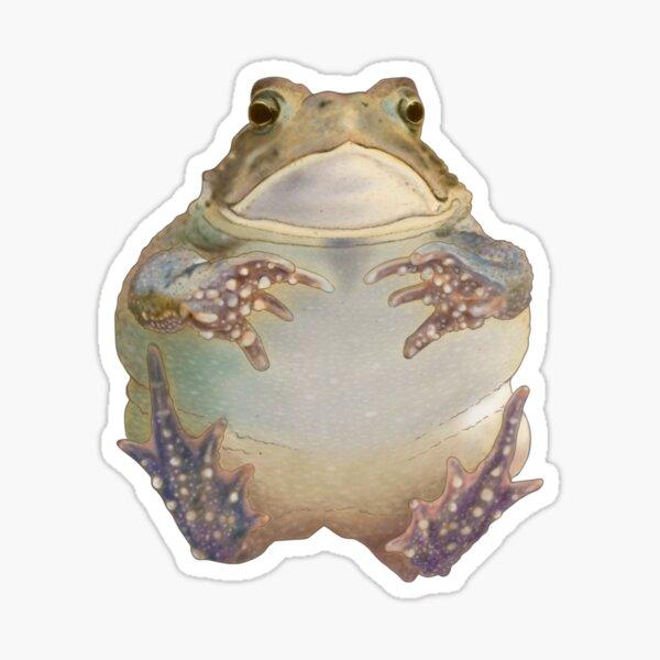 Flying Toad Pegatina