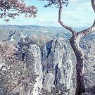 Nostalgic Romantic. Saxon Switzerland by JennyRainbow