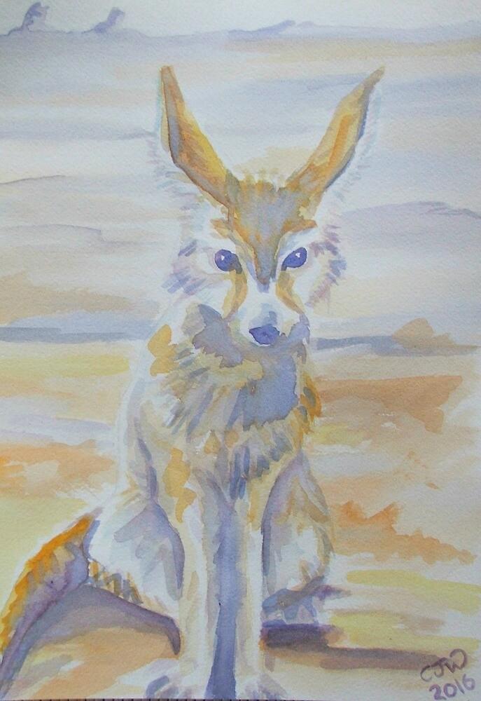 Fennec Fox by cjwaterfield