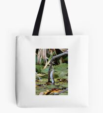 White-naped Honeyeater Tote Bag
