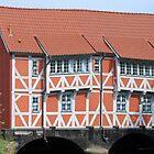 Old house in Wismar - Germany by Arie Koene