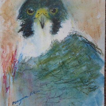Peregrine Falcon by Beswickian