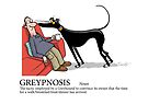 Greyhound Glossary: Greypnosis by RichSkipworth