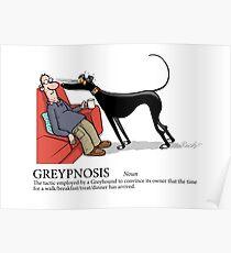 Greyhound Glossary: Greypnosis Poster